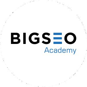 Bigseo Academy